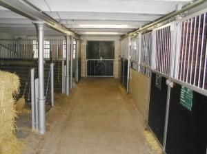 Patientenstall von Tierarzt Dr. Hebeler im Gut Zollhaus in Türkheim